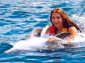 Swim with Dolphins DT Traveller Cancun Mexico Online Booking
