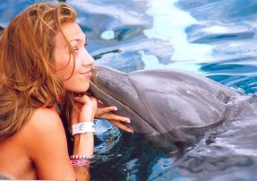 Swim with dolphins Akumal Mexico Online Tickets