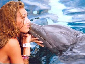 Swim with dolphins Puerto Aventuras Mexico Online Tickets